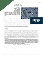 Fermentación maloláctica.pdf-04