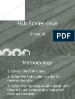 Fish Scales Glue Final Defense