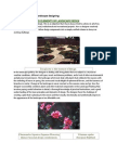 Various Elements of Landscape Designing