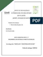 Inv_respaldo y Recuperacion