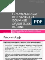 Fenomenologija