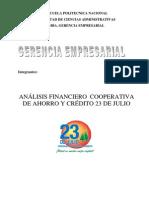 TRABAJO_ANALISIS_FINANCIERO_2010.docx