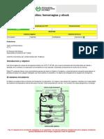 NTP 469 Primeros Auxilios Hemorragias y Shock