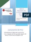 Resumen anteproyecto LOPJ .pdf