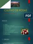 Ejercicio 2 - Examen Basico.xlsx