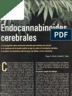 Endocannabinoides Cerebrales