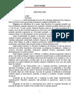 Curs Pneumologie PDF