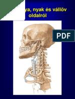 felsovgtag_csontjazletei[1]