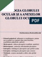 Patologia Globului Ocular Si Anexe.ppt.Conv