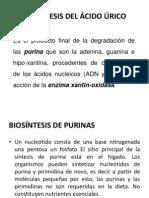 BIOSINTESIS DEL ÁCIDO ÚRICO