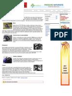 YAMAHA YZF-R125 2008 review - Clubmoto.ro.pdf