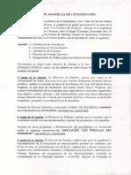 ACTA DE CONSTITUCIÓN LOS PORTALES DEL PROGRESO