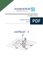 Linear Algebra Modulo 01