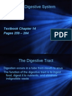 ch5 digesive system pp 2014