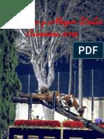 Boletín Cuaresma Abandono y Mayor Dolor 2014