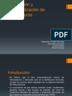 Distribución y Comercialización de hidrocarburos