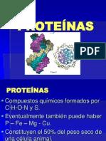 3Proteínas  12