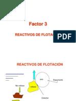 100 Modulo 1 c Factor 3 Reactivos de Flotacion