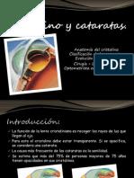 Cristalino y cataratas(1).pptx