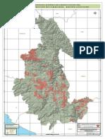 Mapa de Distribucion de Camelidos