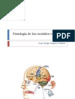 Fisiología de los sentidos especiales f
