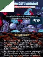 Deteccion Fenotipica de Resistencia en Gram Negativos