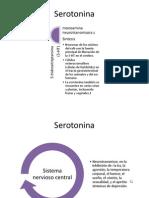 Serotonina Y migraña af