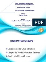 Expo-proyecto Final Alg Lineal