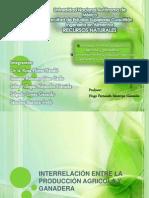 Interrelación y Conversión entre Producción Agrícola y Ganadera.pptx