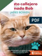 Un Gato Callejero Llamado Bob-James Bowen
