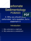 why You Should Study Carbonates