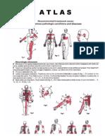 Dens Atlas of Treatment Zones