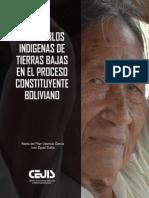 LOS PUEBLOS INDIGENAS DE TIERRAS BAJAS EN EL PROCESO CONSTITUYENTE BOLIVIANO