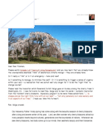 Email to Rex - Spring Blossoms - 2014-04-08a