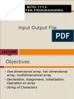 Input Output File