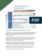 Formulario 510 Como Llenar Para Profesiones Independientes