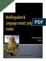 -Multilingualism