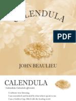 Calendula Booklet