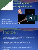 Adaptacion Del Sistema Cardiovascular Al Ejercicio