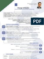 CV_Analyste Intelligence Economique