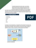 2- Hipotalamo y sistema nervioso autonomo y sueño y vigilia.