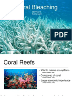 coral bleaching powerpoint