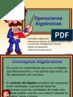 Opera c i Ones Algebraic As