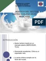 Diapositivas Sector Lacteo Chileno Terminado