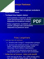 Kelenjar Pankreas