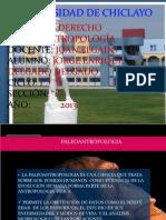 PALEOANTROPOLOGIA (4)