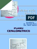 planos cefalometricos