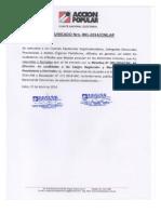 Comunicado Nro 001 2013 CNE AP