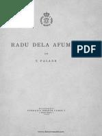 Teodor Palade-Radu de La Afumati