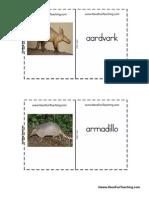 Mammal Flash Cards